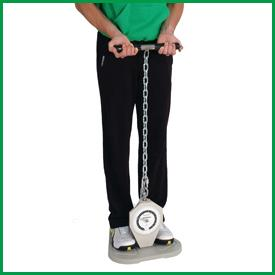 All Products - Back-leg-chest Dynamometer